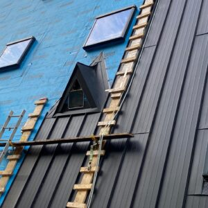 What are the Pros and Cons of Steel & Metal Siding